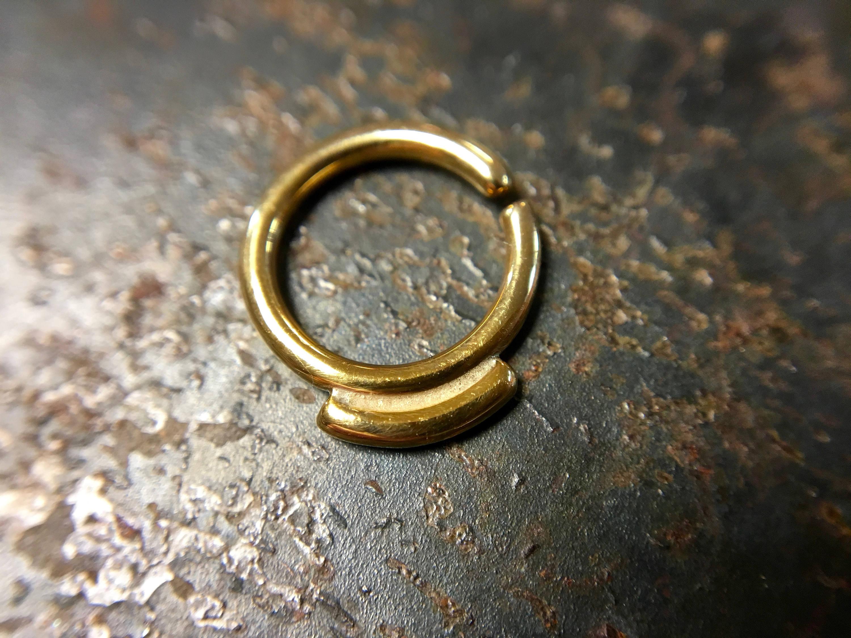 Little Gold Septum Ring
